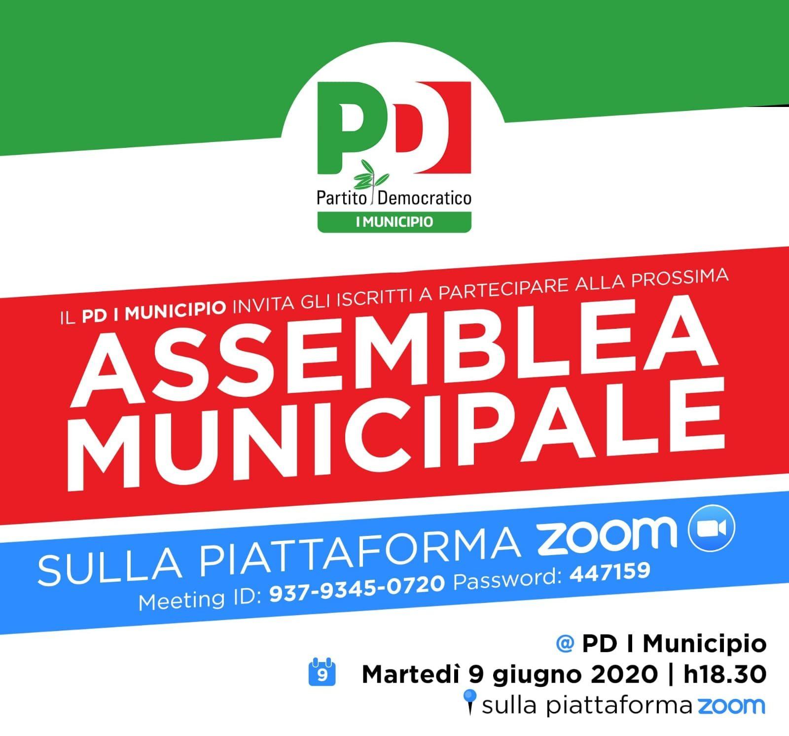 Assemblea Municipale 2
